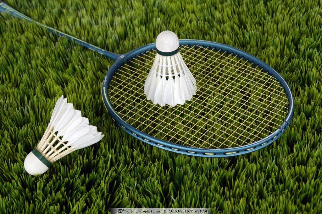 Tennis and Badminton Racket Solutions